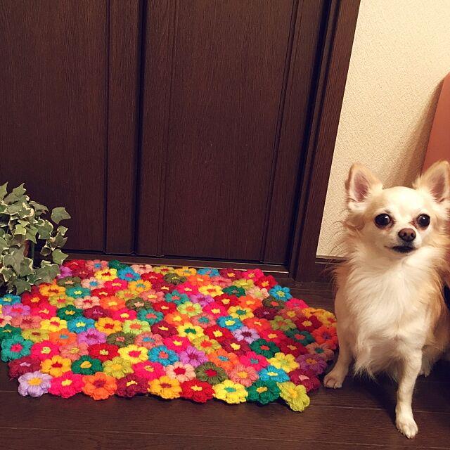 Lounge,花モチーフ,マット,モーリーの花,編み物,ハンドメイド,100均アレンジ,モチーフ編み,ハンドメイド作品,ダイソー,愛犬チワワの蓮,愛犬と暮らす家,カラフル,100均,フェイクグリーン,100均材料で,愛犬 candy.popの部屋