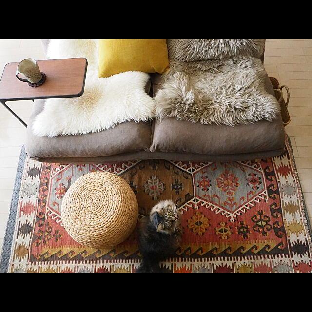 Lounge,ムートン,ニトリ,スツール,ねこと暮らす。,ねこのいる日常,キリム sachiblancの部屋