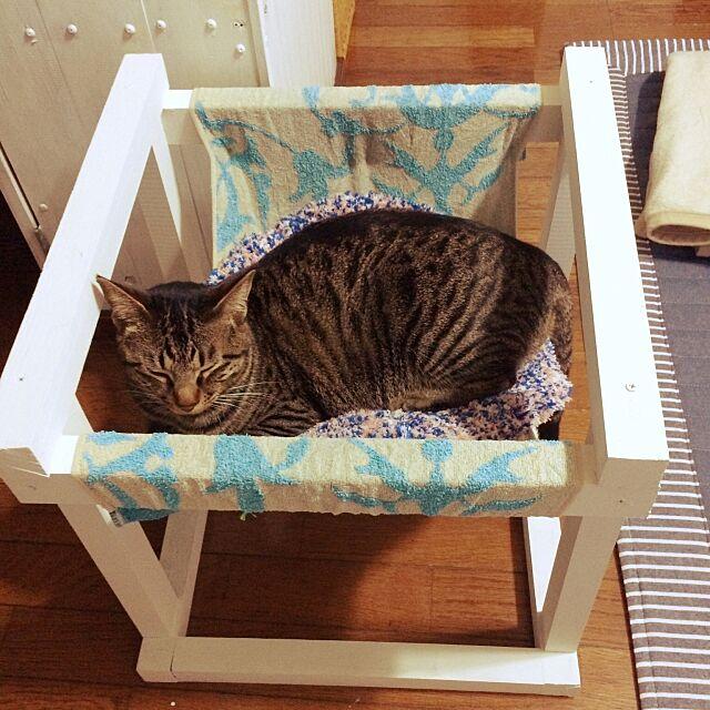 Lounge,DIY,たぬきもどき,西海岸に憧れる,猫用ハンモック,キジトラ,たぬきもどきの会,エイジング,ペンキ,猫 komugiの部屋