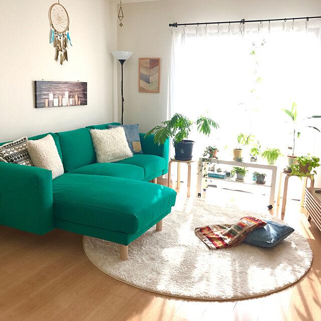 Lounge,IKEAのソファ,ドリームキャッチャー自作,アートパネル,モダンデコ,しまむら,ペンドルトン,BAY FLOW,ニトリ,10000人の暮らし,NO GREEN NO LIFE,グリーンのある暮らし,植物love♡,観葉植物,ユキミアン♡,迷走系,西海岸×ボヘミアン,モリモリアロハ倶楽部,目指せ♡boho style,IKEA,後でゆっくりお邪魔しまーす♡,RCの出会いに感謝♡♡♡,いつもありがとうございます♡ yukiyuki-88の部屋