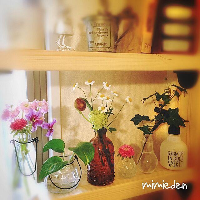 On Walls,丁寧な暮らしを心掛けて♡,一手間かける,グリーンのある暮らし,Can★Doしずく型一輪挿し,セリア電球bottleにアイビー,Can★Do茶色の瓶,セリア瓶,生花に癒やされる日々,瓶×Green♡,いいね!フォローありがとうございます☺︎ mimiedenの部屋