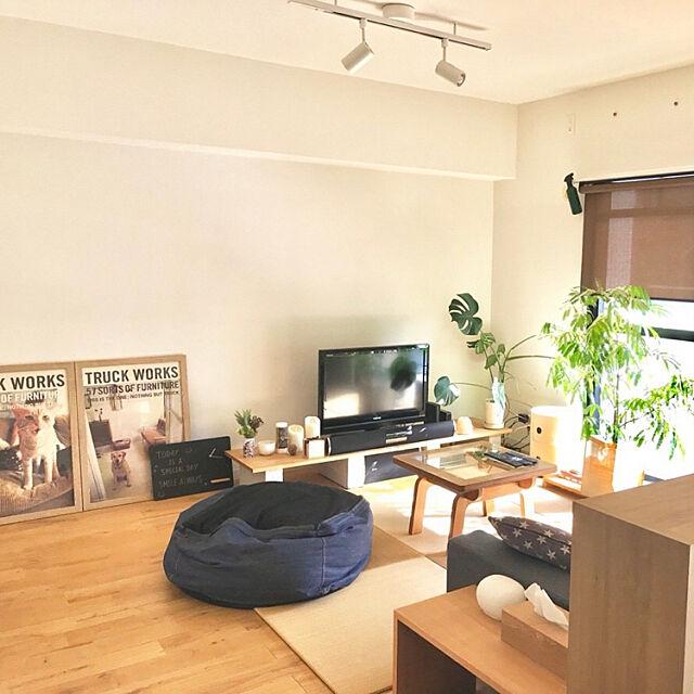 TRUCKポスター,観葉植物,無垢材の床,エバーフレッシュ,Graf,無印良品,Overview,たたみ,モンステラ,ひとをダメにするソファ,kartell,シェードカーテン,賃貸 shakusyの部屋