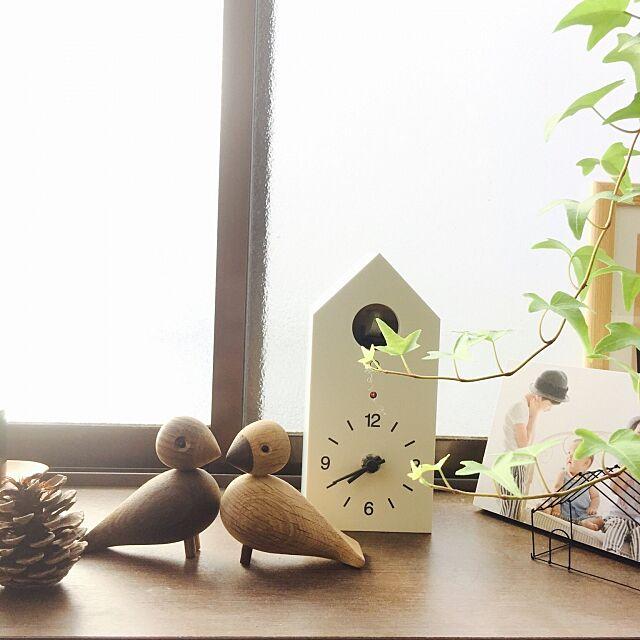 Lounge,無印良品,植物のある暮らし,無印の植物,観葉植物,鳩時計,賃貸,ヘデラ,良品週間,ラブバード puchisyuhuの部屋