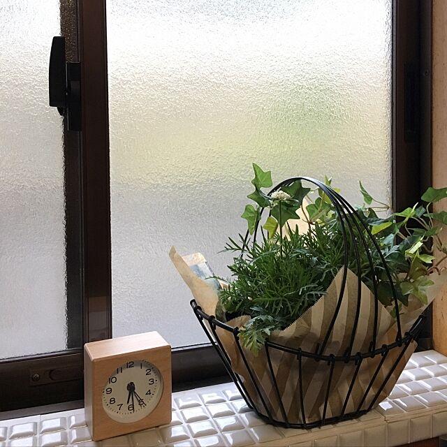 Bathroom,洗面所,ニトリフェイクグリーンモニター,ニトリフェイクグリーン,日本家屋,ig→momo_peng228,無印良品,ニトリ,ブログしてます♡,無印,DIY,整理収納アドバイザー,すっきり暮らしたい pengの部屋