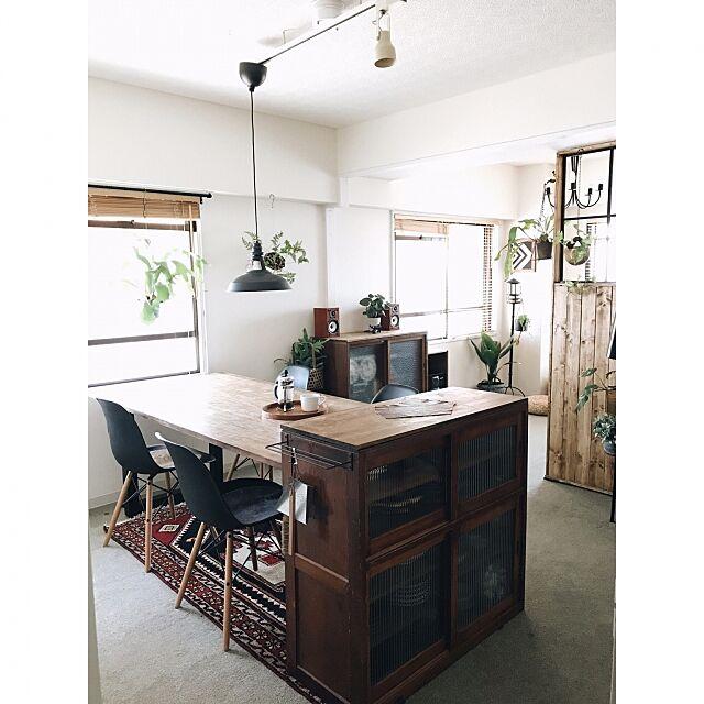 Overview,グリーンのある暮らし,観葉植物,アンティーク,植物,IKEA,DIY,マンション,間仕切り,古家具,レトロ,オーディオ,コウモリラン yamamoの部屋