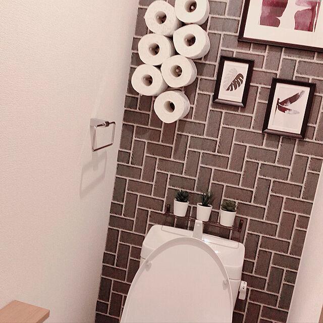 IKEA,フェイクグリーン,モノトーン,Bathroom,TOTOトイレ meguminの部屋
