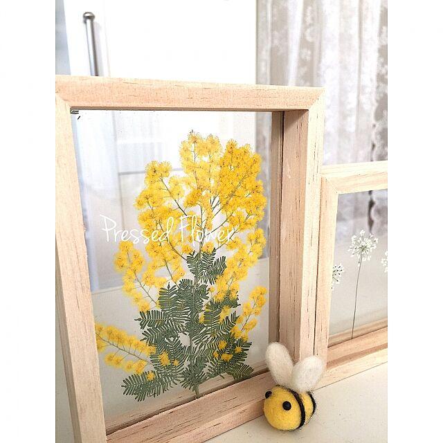 On Walls,hakaseちゃんのハチさん,羊毛フェルト,hakaseちゃん❤,ハンドメイド,押し花,DAISOフォトフレーム,ミモザ,花のある暮らし,ハチさんあそび♪♪,花あそび♪♪,旅する蜂さん♥︎ cherryの部屋