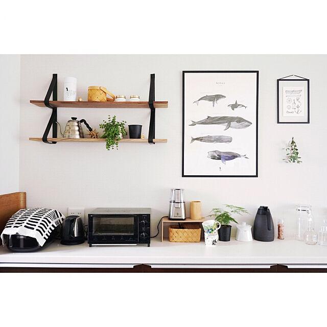 Kitchen,収納,キッチン収納,ig→tomachia,いつもいいねやコメありがとうございます♡,一戸建て,インテリア,北欧インテリア,シンプルインテリア,北欧,キッチングッズ,すっきり暮らす,キッチンカウンター,バルミューダ tomachiaの部屋