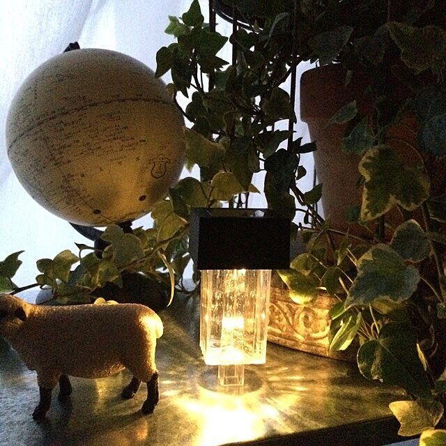 My Shelf,地球儀,シュライヒ,ソーラーライト,海外インテリアに憧れる,川本諭さん風,アンティーク,賃貸,鳥かご,アイビー,IKEA,ミックスインテリア,グリーンフィンガー,アンティークバードゲージ,観葉植物,ダイソー koppunの部屋