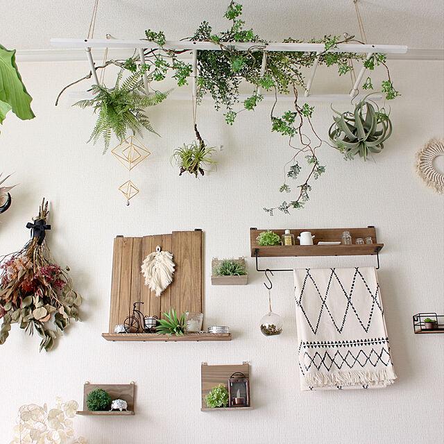 フェイクグリーン,ウォールデコレーション,賃貸,端材,DIY,On Walls,ラダー Kaneyukiの部屋