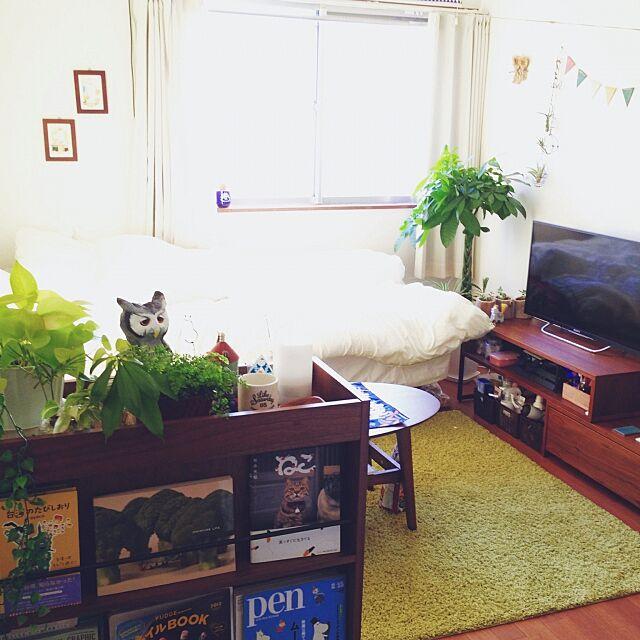 Overview,狭い部屋,雑貨,グリーンのある暮らし,観葉植物,6畳,一人暮らし,カフェ風,グリーン,シンプル,無印良品,Mac yukkii94の部屋