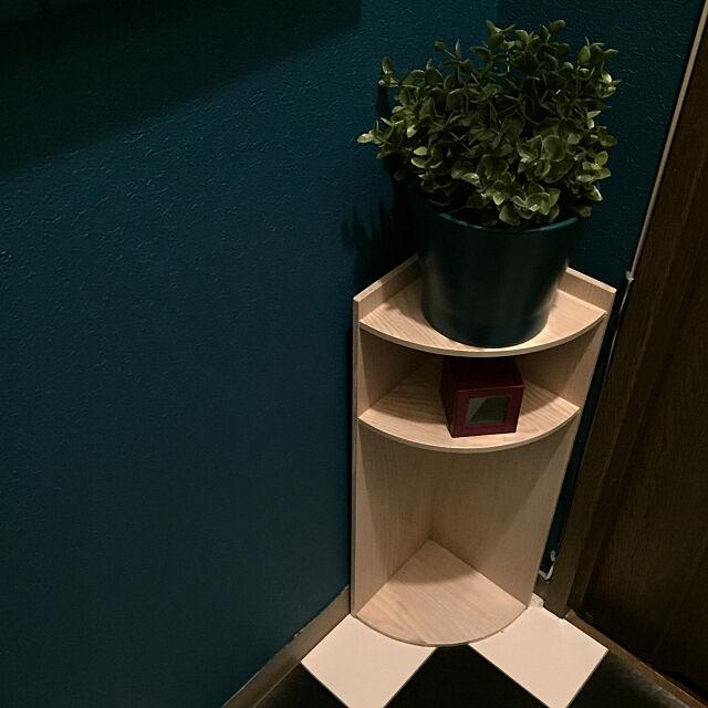 Bathroom,木工DIY,DIY棚,イマジンウォールペイント,しゃれとんしゃあ会,セルフペイント,アートをインテリアに取り入れたい,パリのアパルトマン風,IKEA,壁紙屋本舗 okyame-chanの部屋