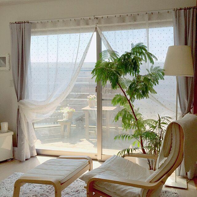 Lounge,IKEA,エバーフレッシュ,植物,ホワイトインテリア,ナチュラル,シンプル,カーテン,ウッドデッキ Rの部屋