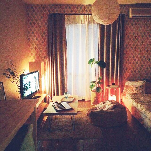 Overview,賃貸,一人暮らし,照明,観葉植物,IKEA,NO GREEN NO LIFE,グリーンのある暮らし,ウンベラータ,ワンルーム,ダメになるソファ mirの部屋