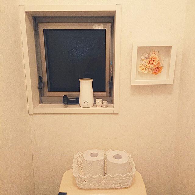 Bathroom,雑貨,ニトリ cocoの部屋