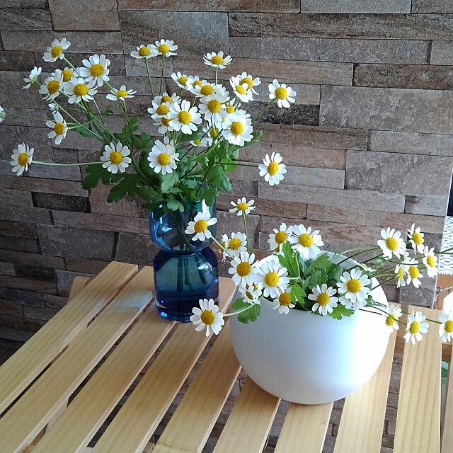 My Desk,いつも見てくれてありがとうございます♡,RC の出会いに感謝!,切り花,マトリカリア,球根ポット,シャンブル,お花のある暮らし,200いいね!ありがとうございます Renの部屋